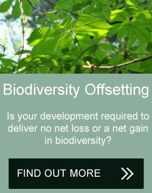 biodiversity offsetting Midlands